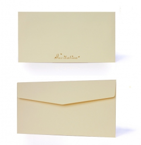 E8001 Imported Envelope *- As Low As RM