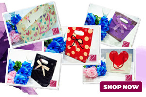 Goodies Gift Bags & Boxes